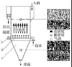 水力浮选分选机基本结构示意